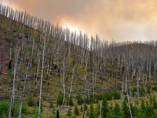 -08142015_sucker creek fire-r.jpg_20150819.jpg