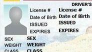 A New Mexico driver's license