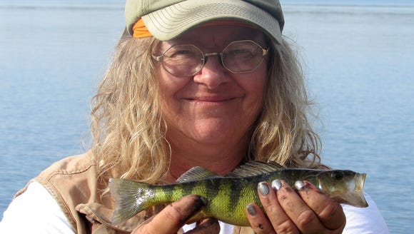 Carol hooked this perch during our New Hampshire stay.