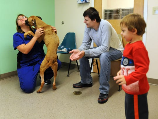 Karie Dinkelmann, left, gets licked by Duke, as she and her husband Paul Dinkelmann and their son Nikolai Dinkelmann, 2, look for a dog Tuesday at the Fairfield County Dog Shelter and Adoption Center in Lancaster.