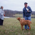 Mick Albert and his wife, Marty, of Norwalk, enjoy an afternoon walking their dog, Zeke, at Easter Lake Park on Wednesday, Nov. 25, 2015, in Des Moines.