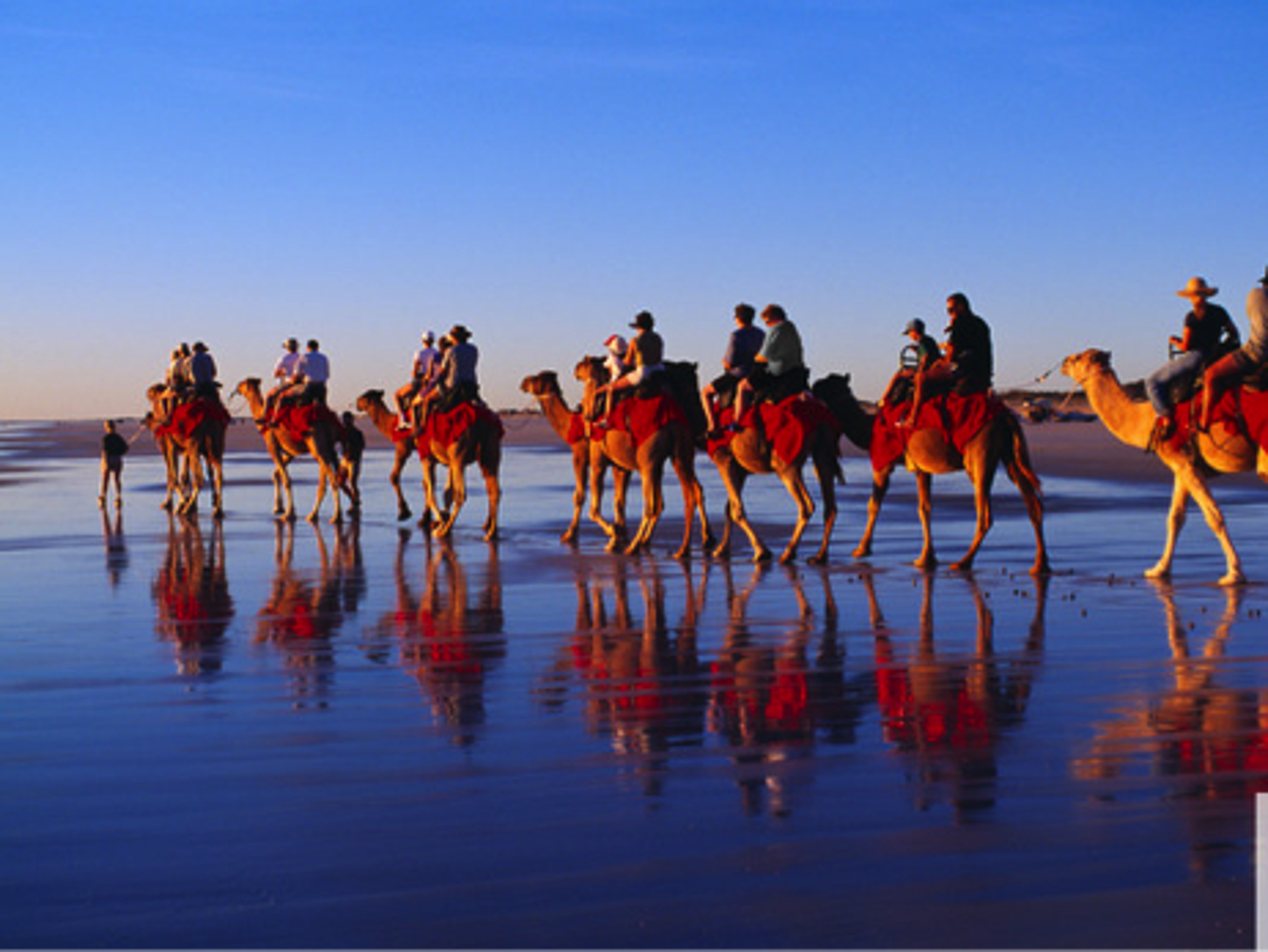 Watch the sunset at Cable Beach while enjoying a camel
