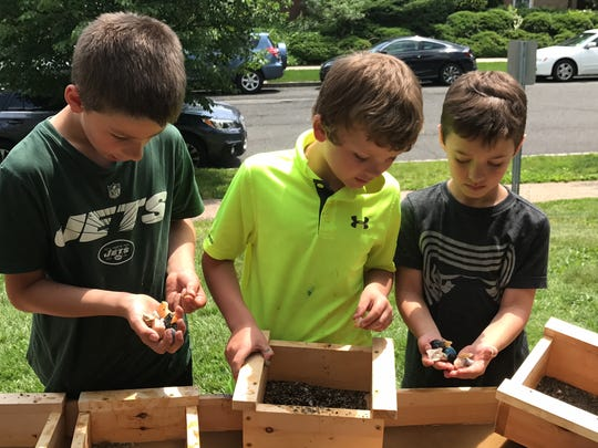 Forest Avenue School second-graders Ryan Log, Fletcher Wiley and Robbie Alvarez, from left, examine their finds from a sluice during a geology lesson in Glen Ridge on Wednesday, May 31, 2017.