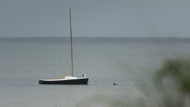 A lone gull sits on a sailboat off Linnell Landing on a rainy Wednesday afternoon.