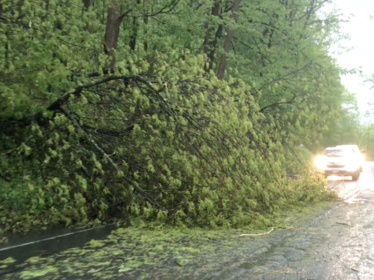 A downed tree blocks part of Route 312, near the town of Southeast in Putnam County on Tuesday.