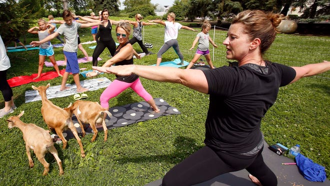 In this July 26, 2017 photo, Mary Cwiklinski, an instructor with The Middle Place Yoga  Studio and Wellness Center in Lake Geneva, Wis, leads yoga students participating in a goat yoga class at Rustic Road Farm near Elburn, Ill. The farm partnered with Cwiklinski to host the class. People find the presence of goats or other animals during yoga calming, Cwiklinski said. It increases students' sense of being connected to the things around us, she said.