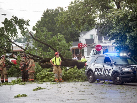 A large tree pulled down utility wires near North Clinton