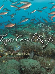 Jesse Cancelmo's book Texas Coral Reefs is filled with