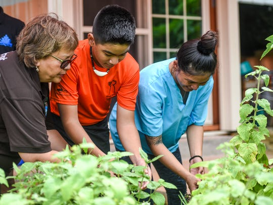 Pineksai Håya participant Damian Mafnas, center, gets a first-hand lesson in plant identification from Håya Foundation President Zita Pangelinan, left, and his mother, Clarissa Torres, at the Sågan Kotturan Chamoru Cultural Center in Tamuning on Friday, Aug. 3, 2018.