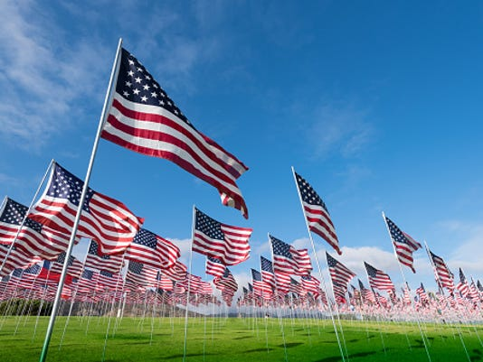 636136061320463433-flags.jpg