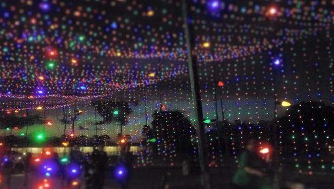 'Tis the season for sparkling lights and holiday events. MObilize Brevard brings you the best in active things to do each weekend with the Fit Friday Best Bets.