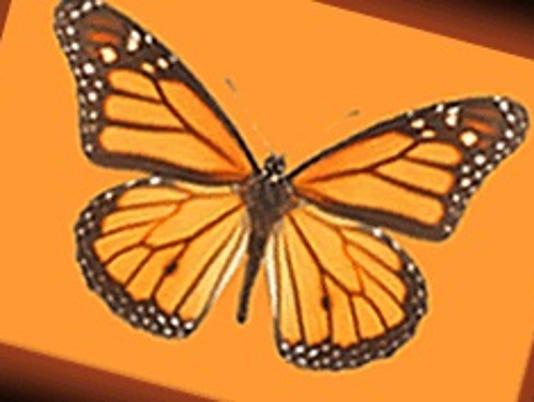 Companion Day Services logo.jpg