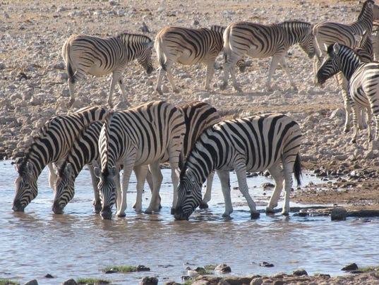 XXX NAMIBIA_11