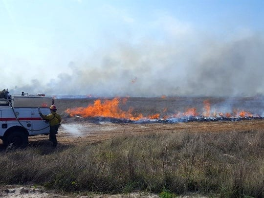 Grass burns during a controlled burn on North Padre