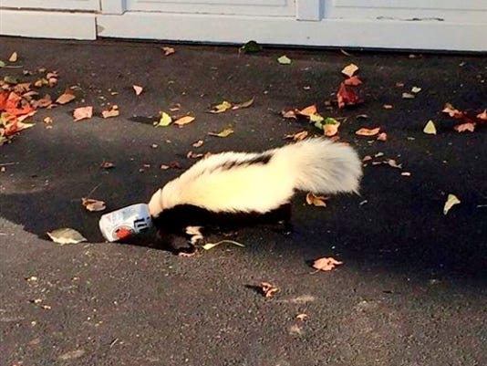 Skunk Stuck Beer Can_Smit