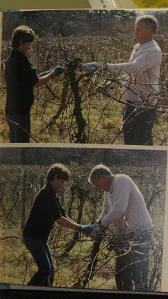 Debbie and Bill are shown working in the vineyard at Sweet's Corners on a hot March Day in 2012.