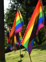 Rainbow flags line Terrace Park for Sioux Falls Pride on Saturday, June 18, 2016.
