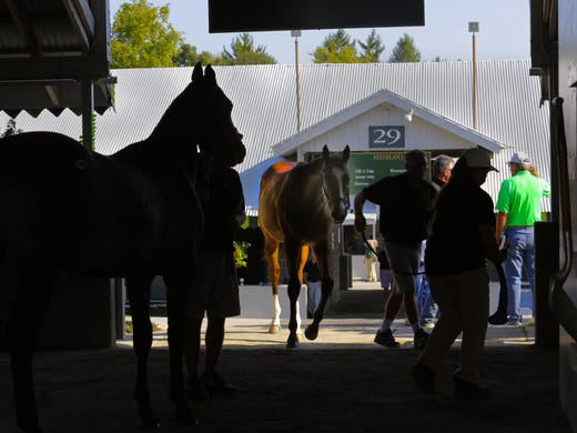 Breeders Cup 2015 Coming To Keeneland In Lexington