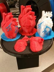 Some of the 3-D-printed hearts developed by UCF.