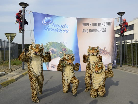 Greenpeace Belgium activists dressed in tiger costumes stage a protest at P&G Brussels Innovation Center (BIC) in Grimbergen, urging the company to commit to zero deforestation to guarantee its products, which include Head & Shoulders, become forest-friendly. A Greenpeace investigation found that a palm oil producer linked to Procter & Gamble s supply chains is destroying primary forest in the Indonesian region of Papua.