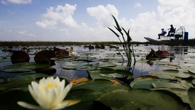 An airboat races across Miccosukee tribal lands in the River of Grass. President Barack Obama is coming to Everglades National Park Wednesday to talk about climate change and sea level rise.
