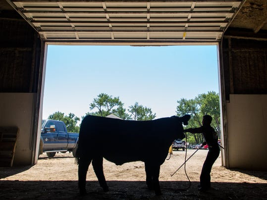 w 1021 Livestock board.jpg