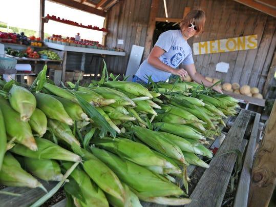 1 corn harvest