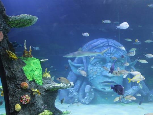 Michigan?s largest aquarium opens Thursday at Great Lakes Crossing
