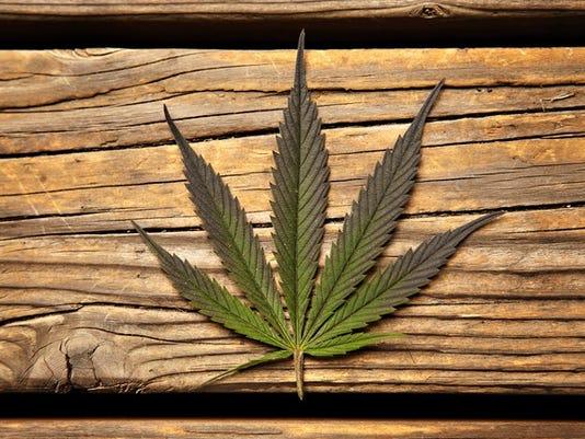 marijuana-leaf_large.jpg