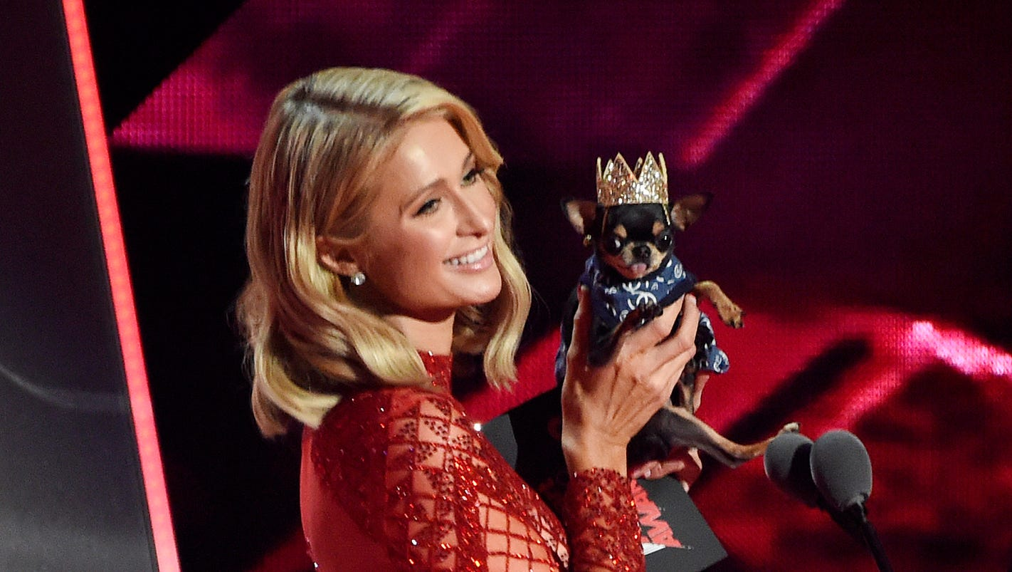 Celebs and dogs: The most adorable photos