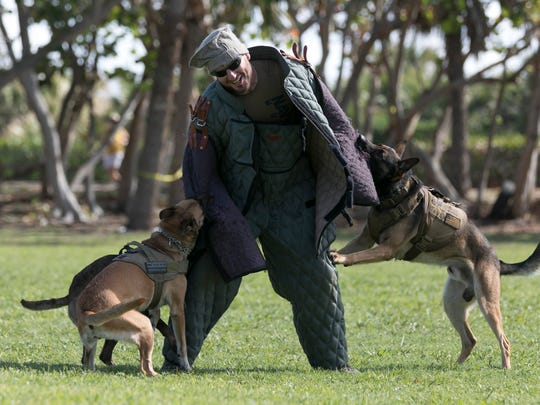 A K-9 demonstration is among the activities at this year's National Navy UDT-SEAL Museum's Muster and Music Festival.