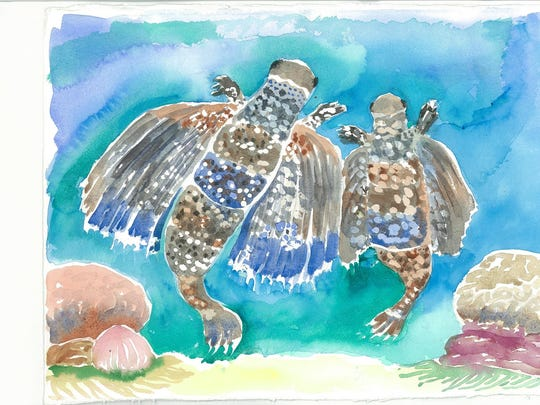 "Illustration of flying gurnards by Roberta Raymond, from her children's book ""Three Sea Tales."" Twenty-one original watercolors by Raymond that were used in the book are on exhibit in August at Unitarian Universalist Gallery."