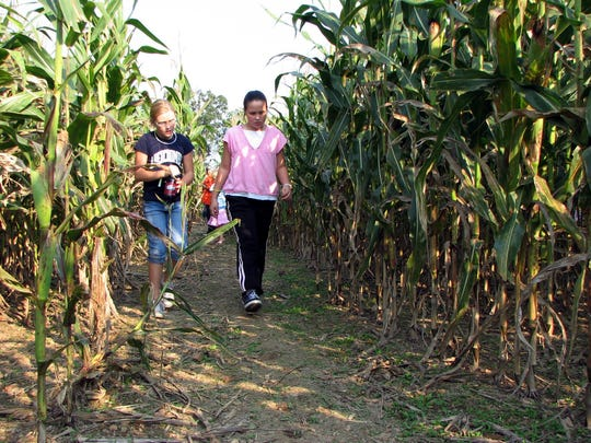 Corn maze and pumpkin patch season will soon be upon us.