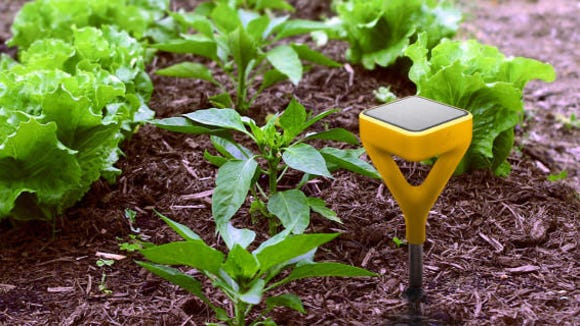 Analyze your garden before you plant.