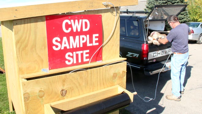 A hunter prepares a deer for chronic wasting disease testing at a CWD sampling kiosk in Spring Green.