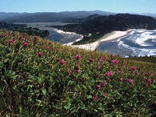 Best hikes near Salem and Keizer. No. 2 - Cascade Head Trail.