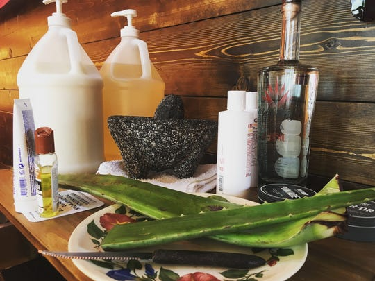 Adal Castellon Jr. uses raw, muddled aloe vera in his botanical treatment at the new Spanish Fly barbershop in NuLu.