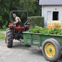 Growing interest in CSAs; How to join