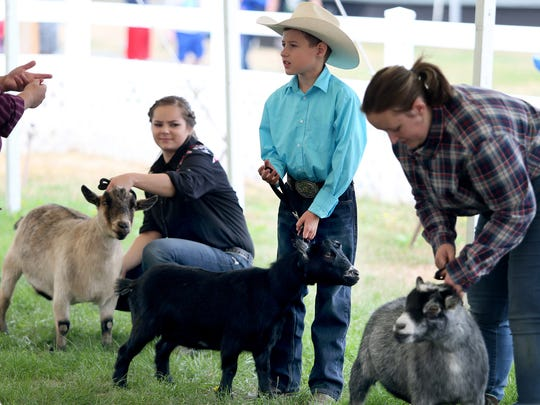 John Siegrist, 10, from Port Orchard, with his pygmy goat Bits, was another first-time competitor at the fair.
