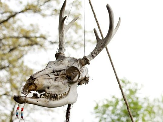 A skull hangs in front of Canton resident Leonard Darnell's