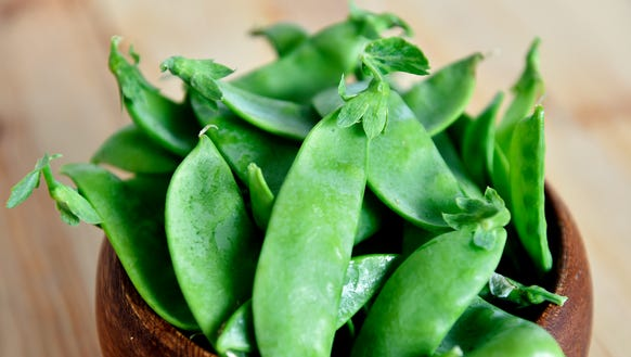 Snow peas, part of a CSA share from Prescott's Patch.