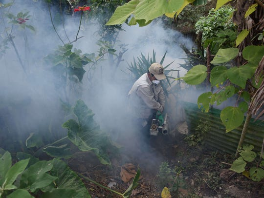 Health Ministry employees fumigate against the Aedes