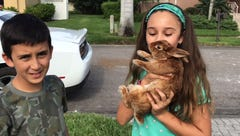 South Fort Myers family's pet bunny found safe in rubble after fire that destroyed home