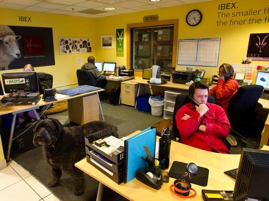 The customer service department at Ibex outdoor clothing in White River Junction on Tuesday, February 5, 2013.
