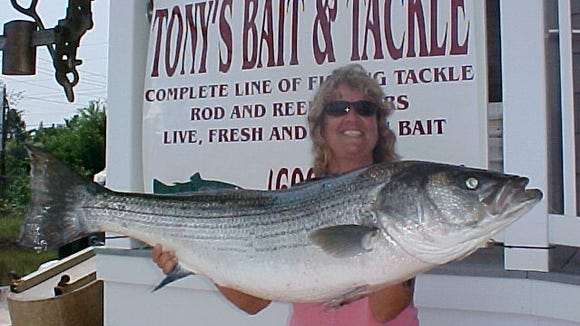 Julie Ruth of Tuckerton holding a 40-pound striped bass that she caught last summer.