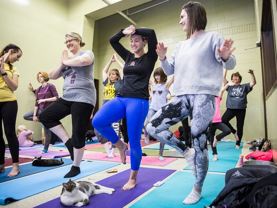 Stephanie Hutchinson, owner and yoga instructor at Studio Exhale, leads a cat yoga class at the Muncie Animal Care and Services Facility Thursday night. The class, which costs $10, raises funds for the shelter and introduces attendees to adoptable cats. Hutchinson said she plans on offering the cat yoga classes each month.