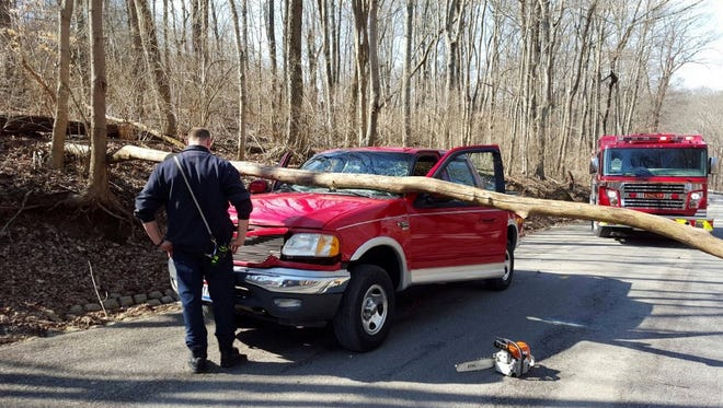 Miami Township emergency crews respond after a tree fell on a truck on Ibold Road in Clermont County.
