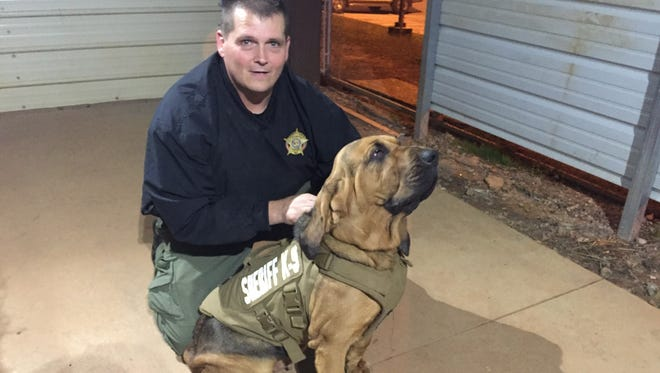 Annie is one of two Laurens County Sheriff's dogs who received protective vests that pay tribute to a police dog, Jethro, who was shot and killed by a burglar in Canton, Ohio.
