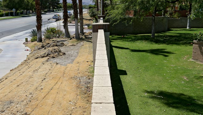 Dry turf being removed stands in contrast to the green grass on the other side of the wall at the Casablanca gated community at the corner of Hovley Ln and Portola in Palm Desert, Tuesday, August 18, 2015.