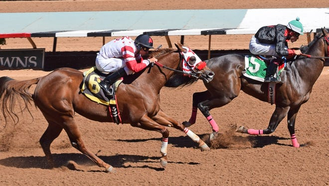Thomas Lepic's homebred The Fiscal Cliff cruised to a one-half length win with the fastest-qualifying time of :19.960 for 400 yards in the first of two trials to the $40,000 Adequan Ruidoso Downs Derby Challenge on Friday afternoon.